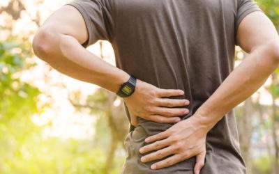 La prospettiva del fisioterapista secondo una visione evidence-based nella cura del paziente con dolore lombare