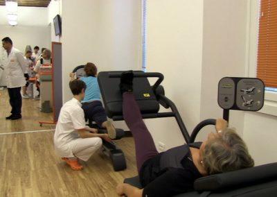 esercizi-di-allungamento-muscolare-Fisiosan