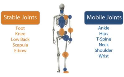 Mobilità o stabilità? quando la diagnosi è incompleta il risultato non potrà che essere parziale.